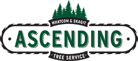 Ascending Tree Service